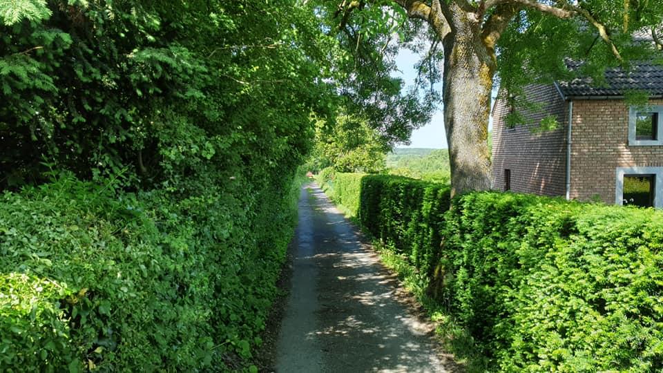 Onne-Traas-in-St-Vith-om-bij-het-tuincentrum-te-komen--16-3-2021-(2)