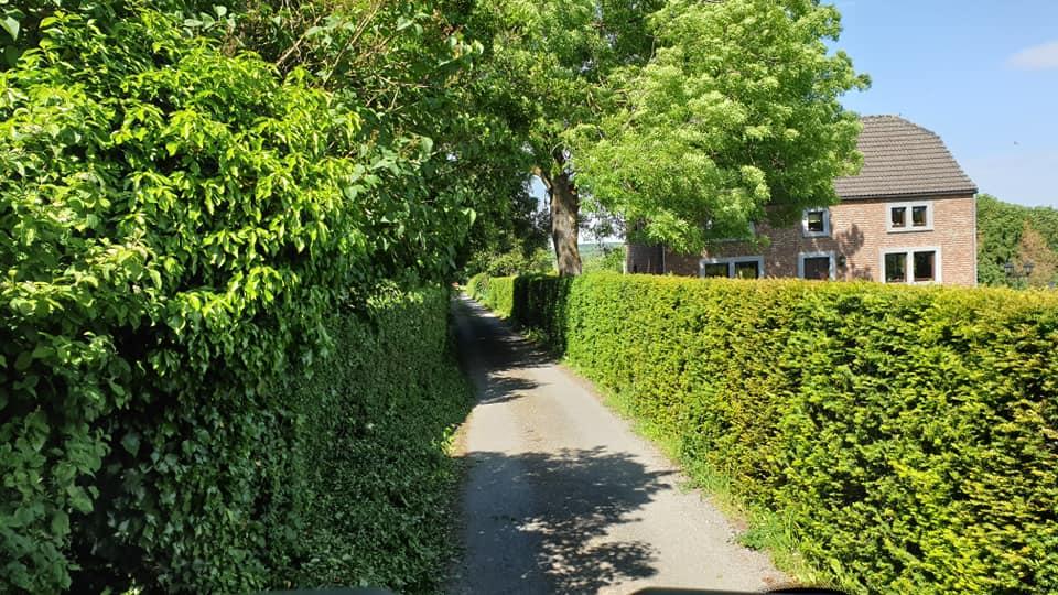Onne-Traas-in-St-Vith-om-bij-het-tuincentrum-te-komen--16-3-2021-(4)