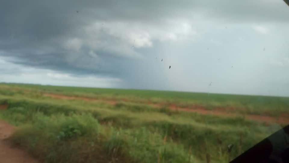 Regen-Chuva---(3)