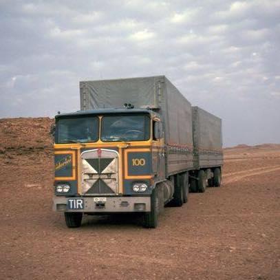 KW-nr-100