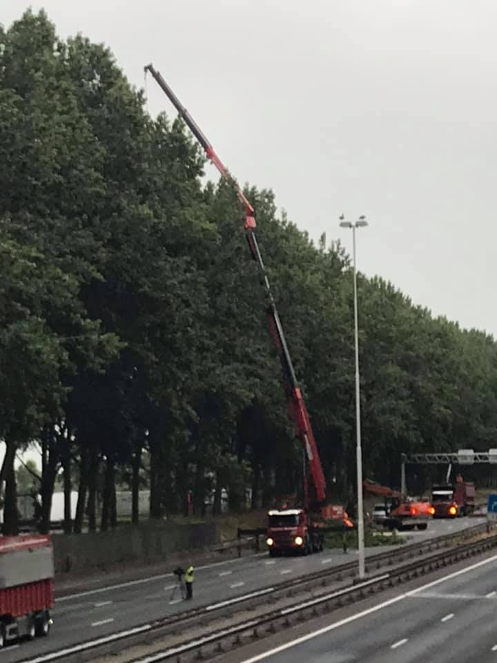Dagje-rooien-A-20-19-7-2019-(3)
