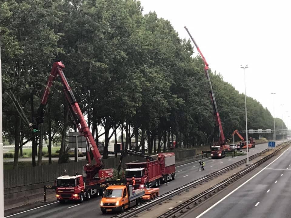 Dagje-rooien-A-20-19-7-2019-(5)