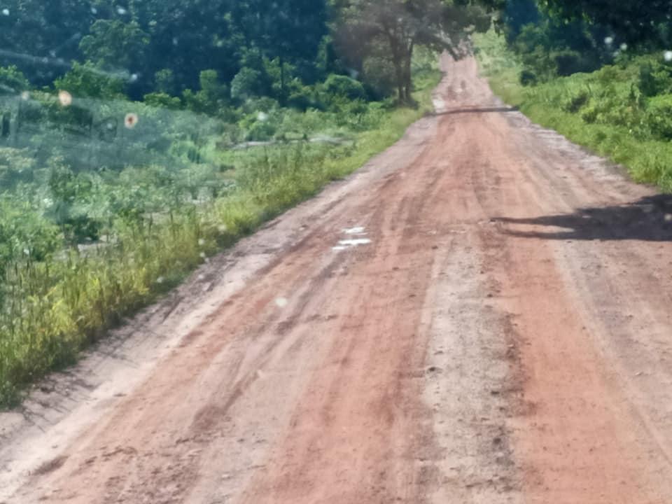 onderweg-landweg-of-normale-rijweg-op-het-platte-land-(4)