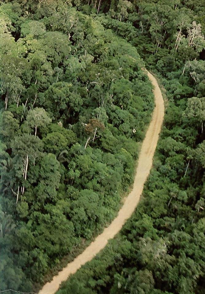 Door-het-bos--kan-niet-aanders-(4)