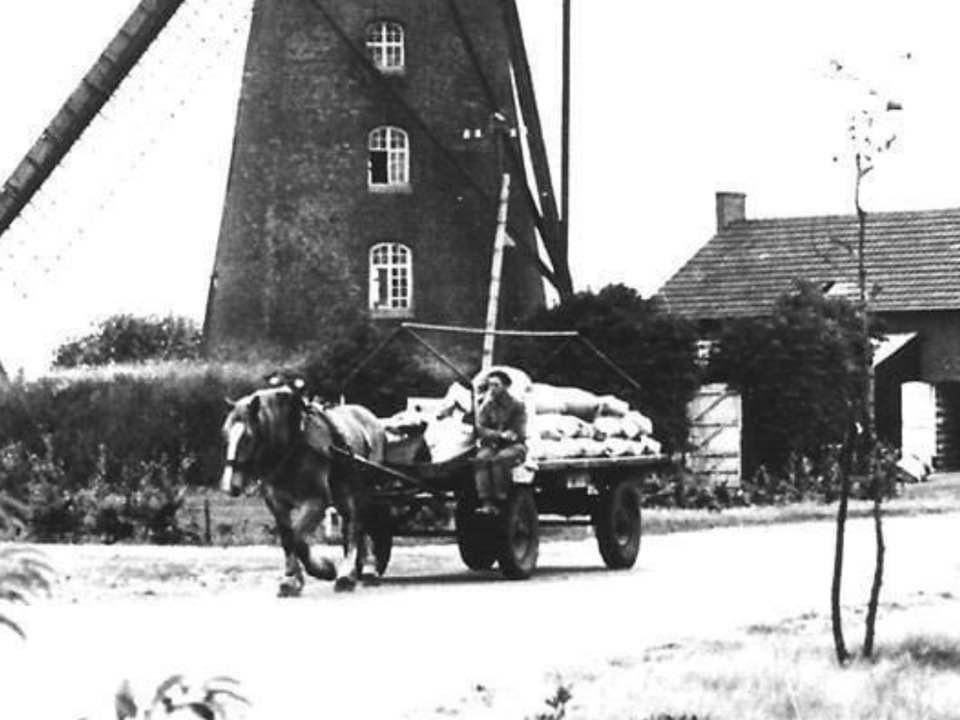 Meelwagens--Piet-Schoorl-archief