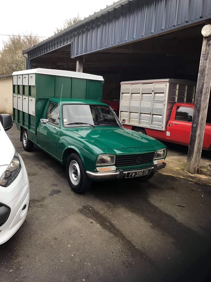 Peugeot-504-animal-transports-(1)