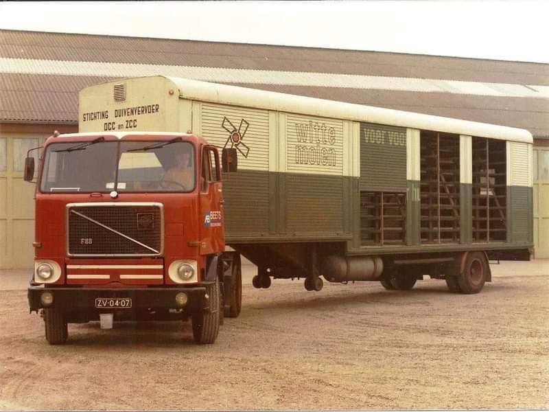 Volvo-F-88-duiven-vervoer