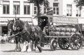 Tweespan-van-brouwerij-Omer--Vandeginste---Bellegem