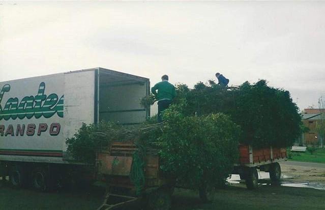 Rene-Eveleens-Hongarije--vlug-lossen-en-dan-naar-de-Sultan-hotel-(3)