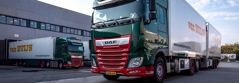 Daf-15-BLG-6