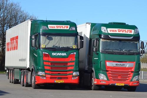 Scania-NG-S-500--Daf-XF-480
