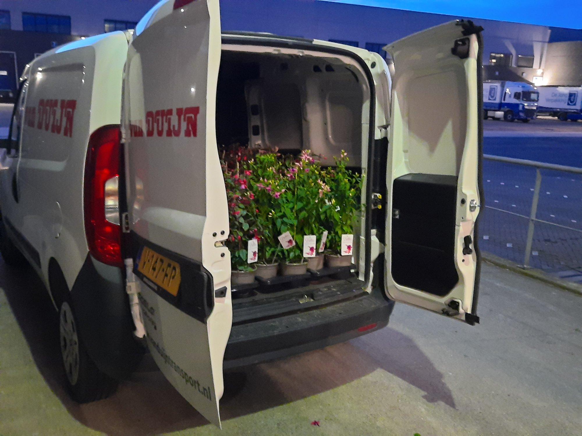 sneltransport-80-planten-geschonken-aan-het-personeel-van-Cardia-Den-Haag