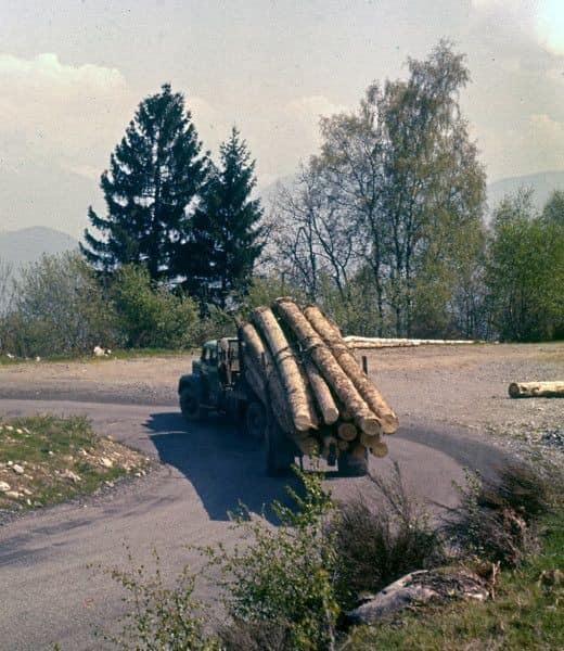 Berliet-koning-van-het-bos-(11)