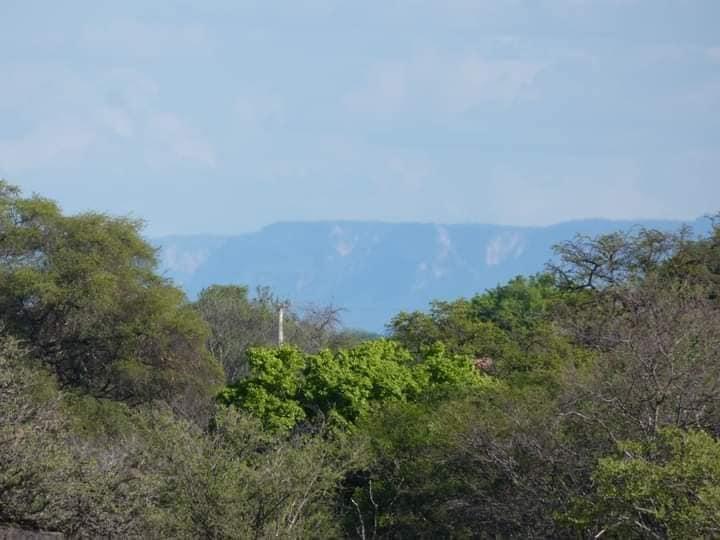 Ibitiara-Bahia-omgeving--(31)