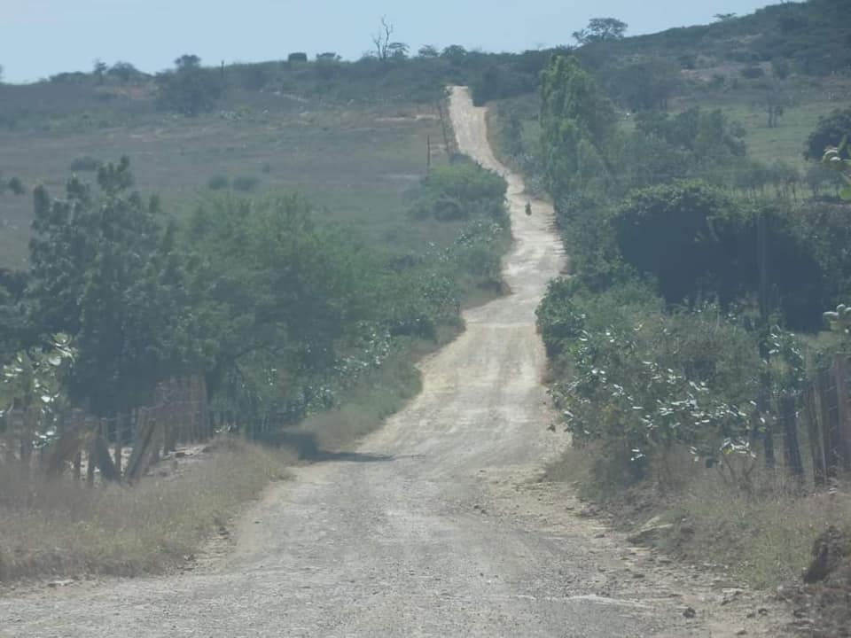 Ibitiara-Bahia-omgeving--(40)