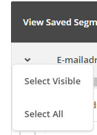 snel iedereen selecteren in mailchimp